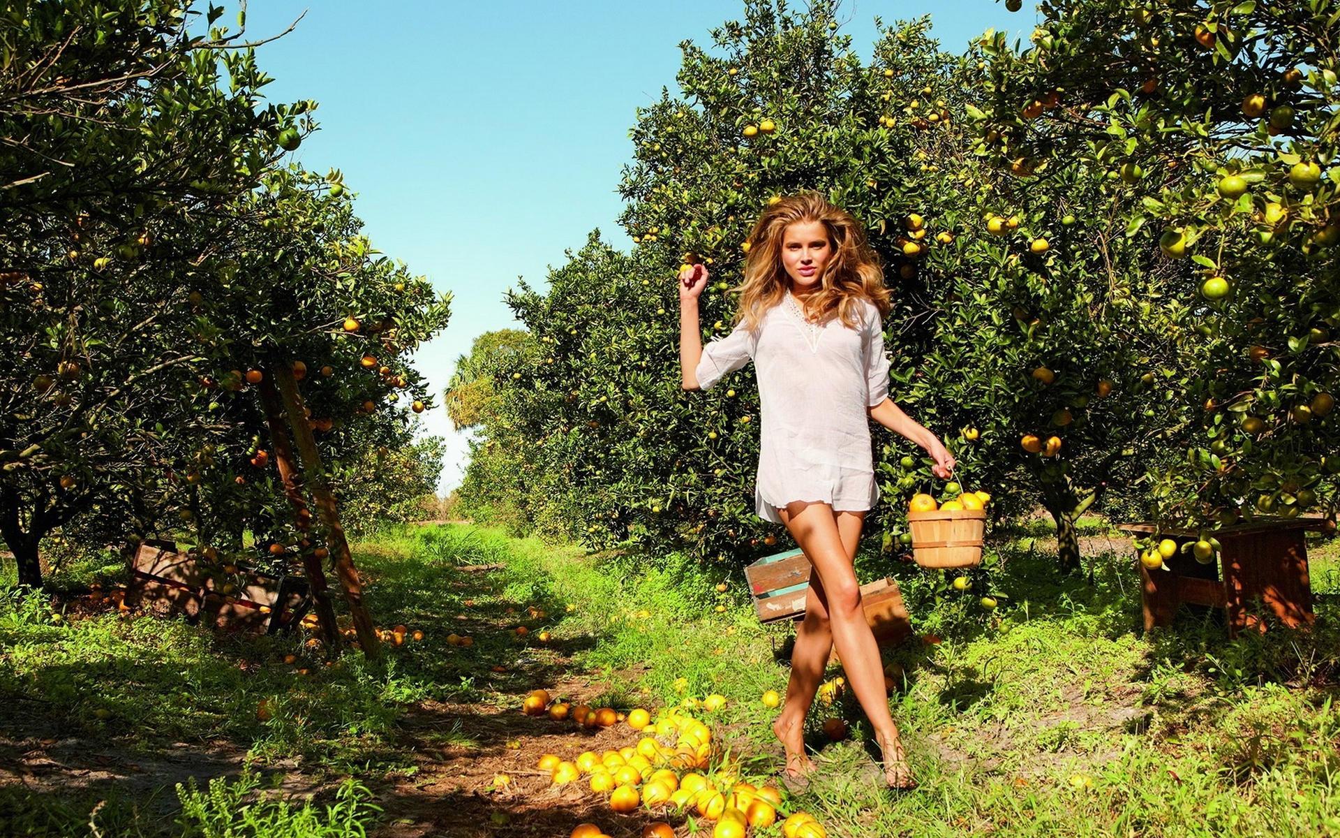 Фото девушек собирающих яблоки