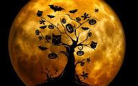 На фоне луны дерево с тыквами