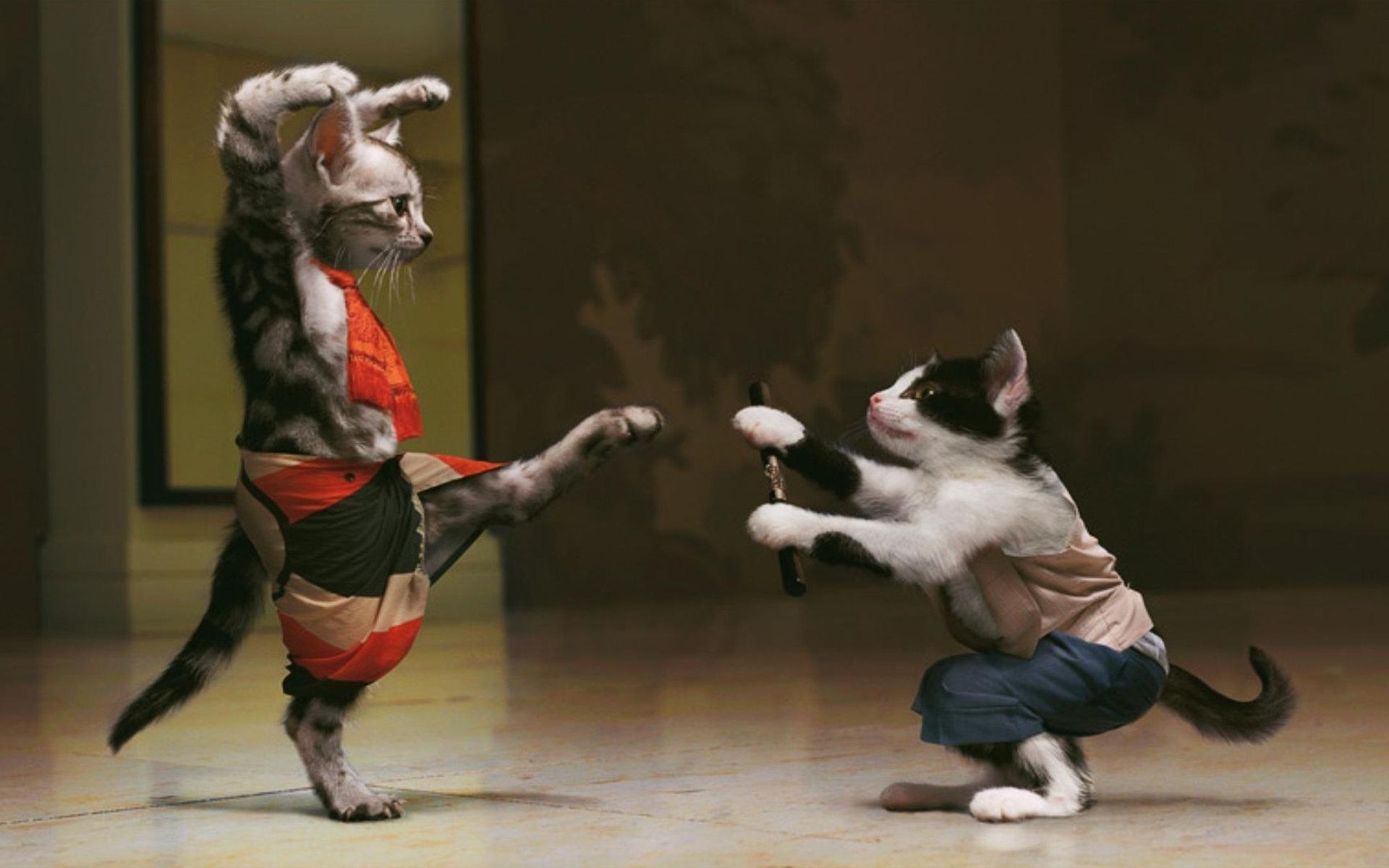 Прикольные картинки танца