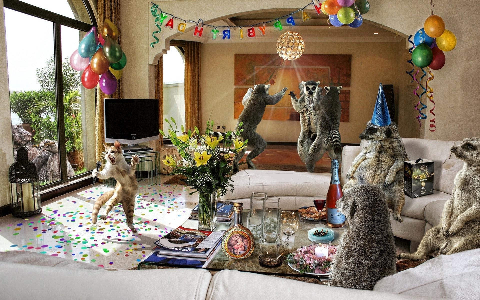 Прикольная картинка вечеринка, рождественская прикольные картинки