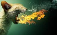 Огнедышащий кот с языками пламени