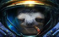 Ленивец космонавт курит в скафандре