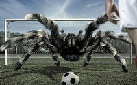 Паук тарантул играет в футбол