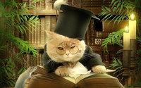 Кот ученый в цилиндре с книгой и мышами
