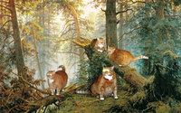 Утро котов в сосновом лесу. Кошачий лес