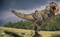 Коты и кошки нападают на тираннозавра