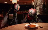 Муха жалуется на человека в тарелке