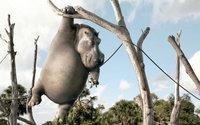 Бегемот висит на дереве с бананом