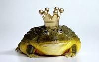 Царевна лягушка с короной на голове