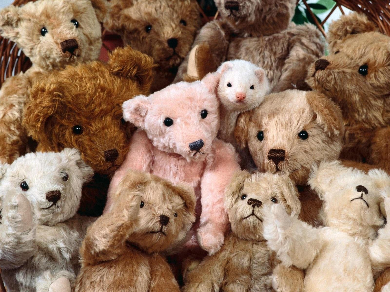 Много мягких медвежат