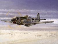 Самолёт Штурмовик P-51