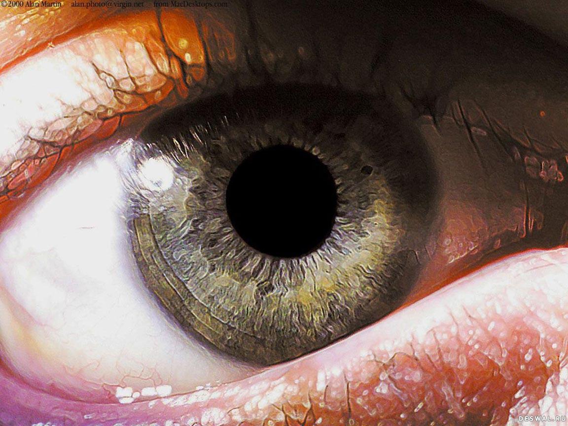 Фото 2.. Нажмите на картинку с обоями глаз, чтобы просмотреть ее в реальном размере