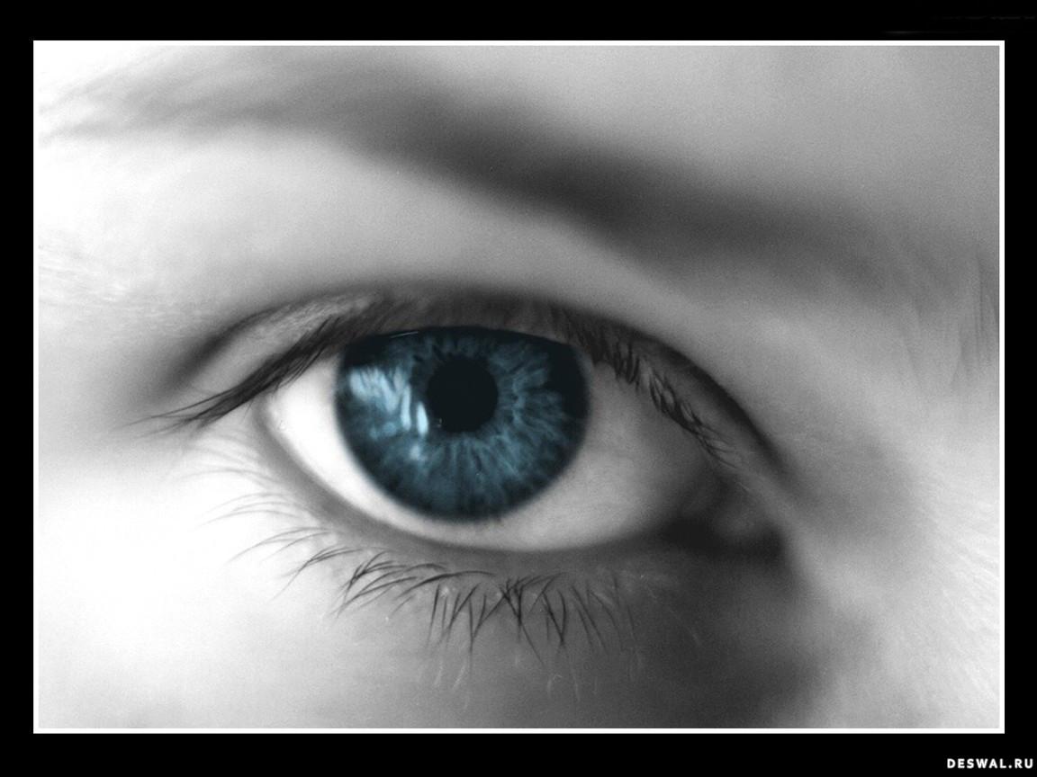 Фото 12.. Нажмите на картинку с обоями глаз, чтобы просмотреть ее в реальном размере