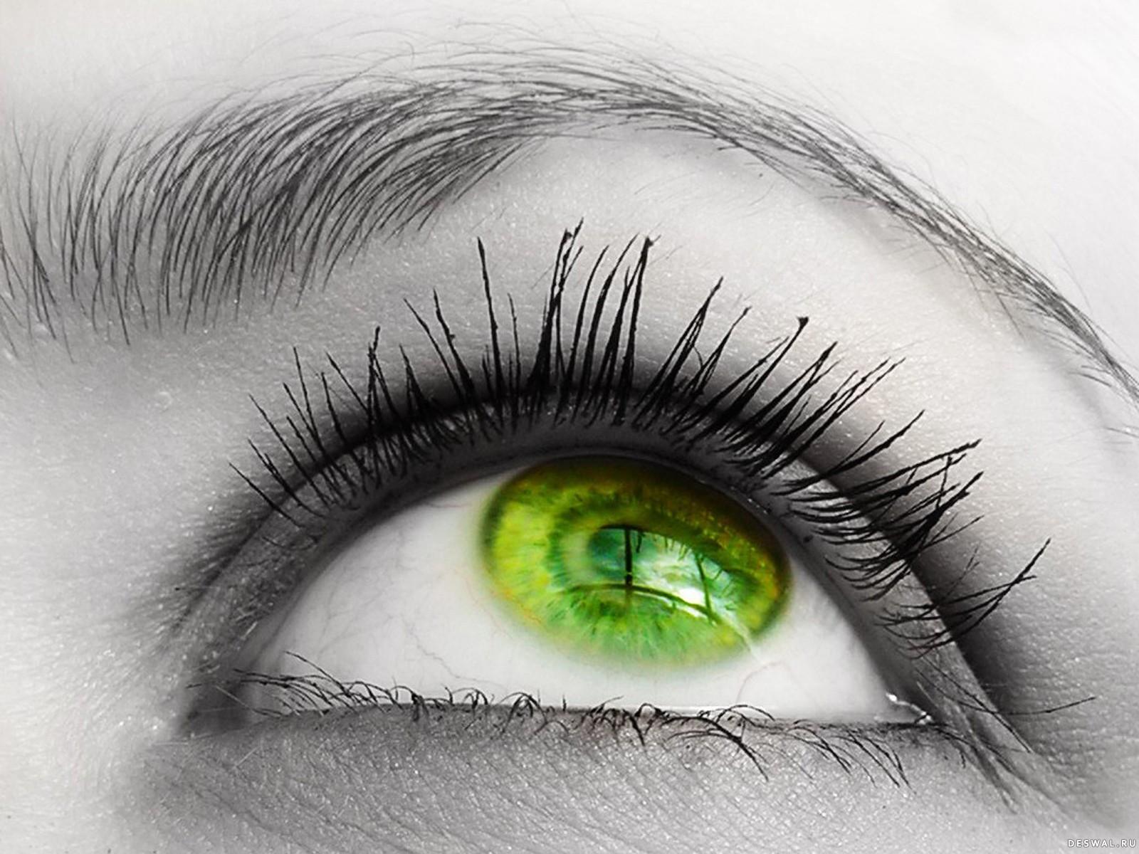Фото 13.. Нажмите на картинку с обоями глаз, чтобы просмотреть ее в реальном размере
