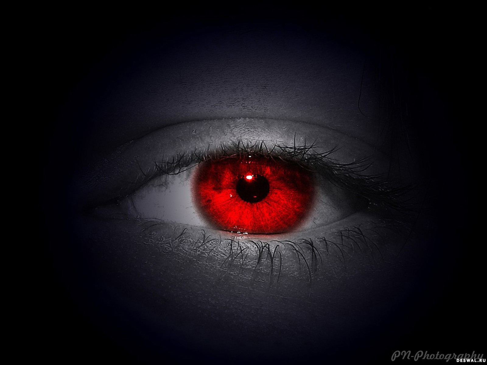 Фото 17.. Нажмите на картинку с обоями глаз, чтобы просмотреть ее в реальном размере