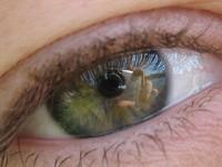 Фото 44.. Обои для рабочего стола: обои с глазами