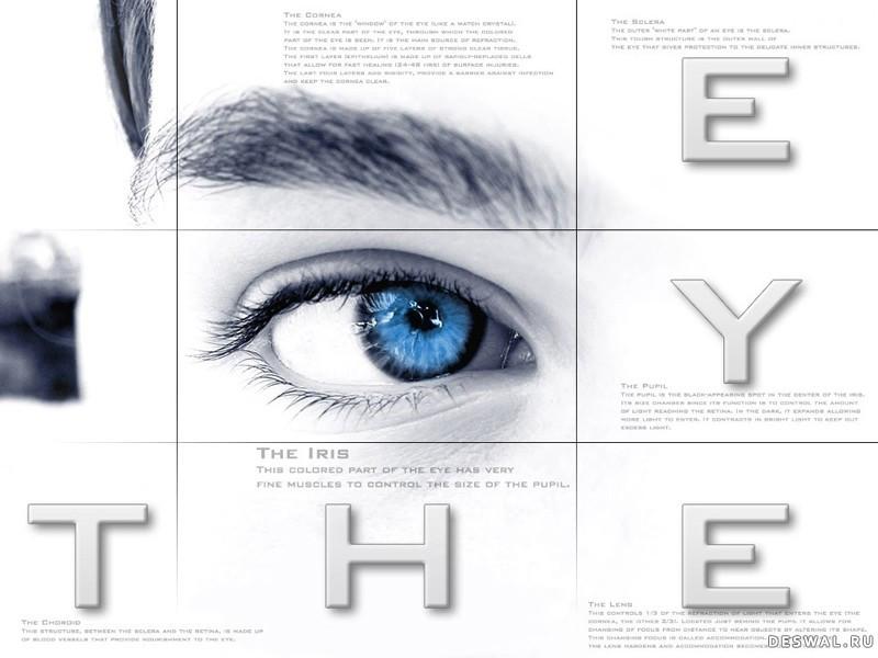 Фото 25.. Нажмите на картинку с обоями глаз, чтобы просмотреть ее в реальном размере