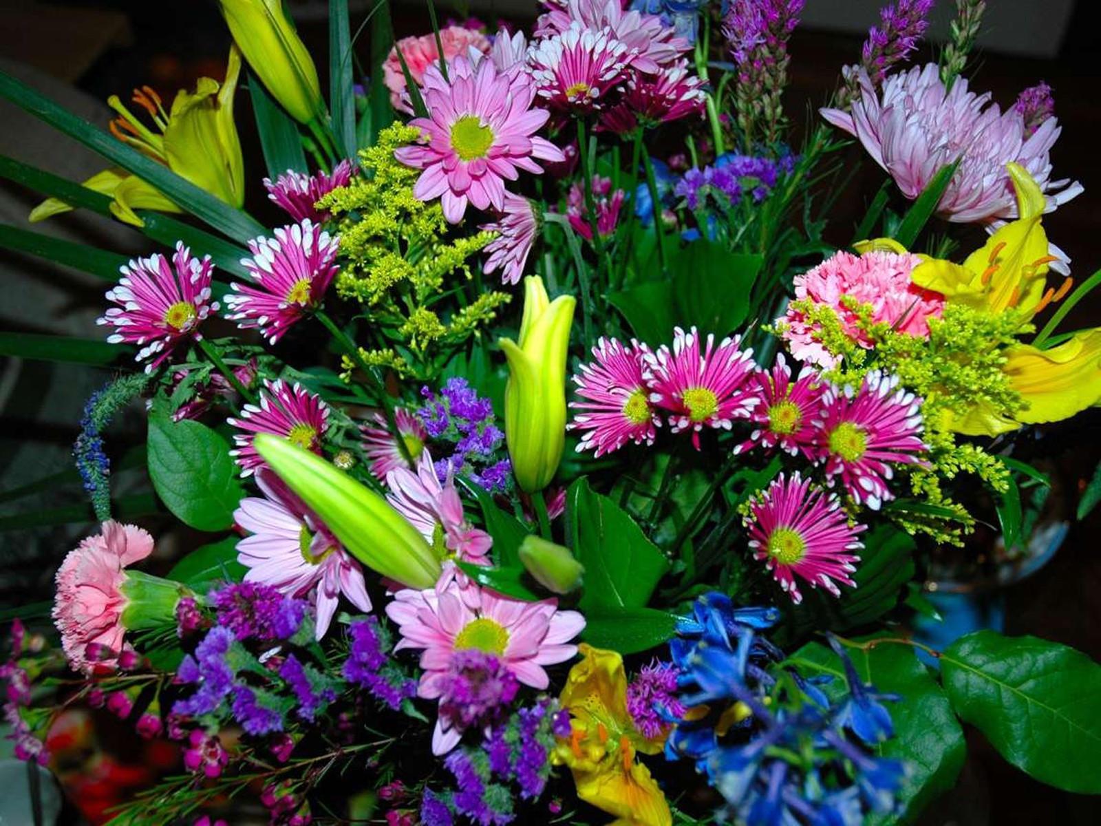 Фото большего размера цветов
