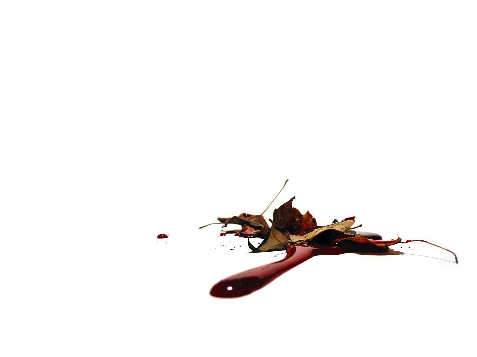 Капли крови под листьями