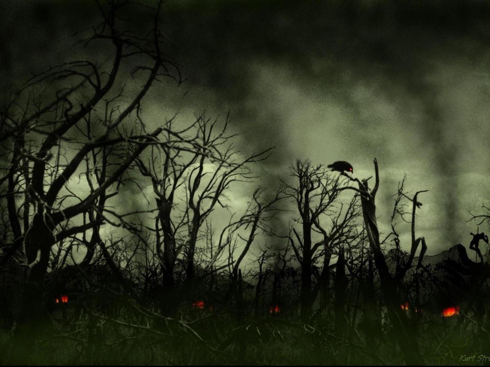Ворон на поломанных деревьях