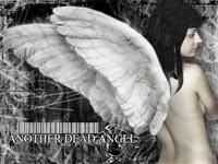 Девушка с белыми крыльями