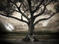 Девушка с крыльями под деревом