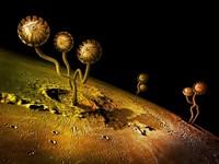 Интересный фантастический мир на планете