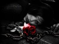 Цепь и красная роза