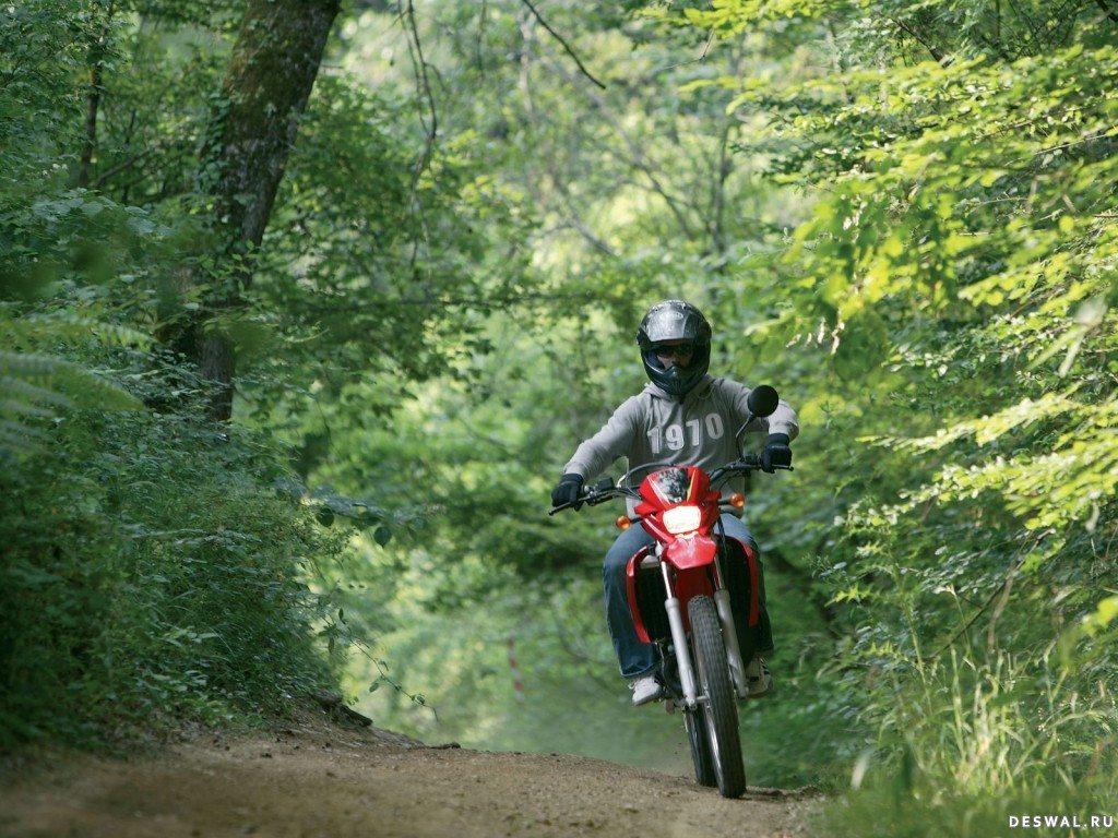 Мото МБК на хорошей фотообои. Нажмите на картинку с обоями мотоцикла mbk, чтобы просмотреть ее в реальном размере