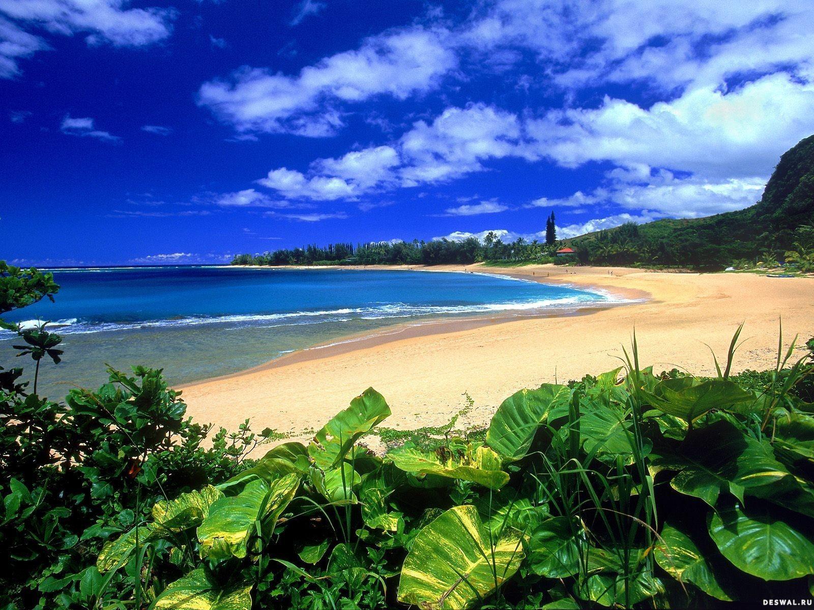 Фото 32.. Нажмите на картинку с обоями природы - пляж, чтобы просмотреть ее в реальном размере