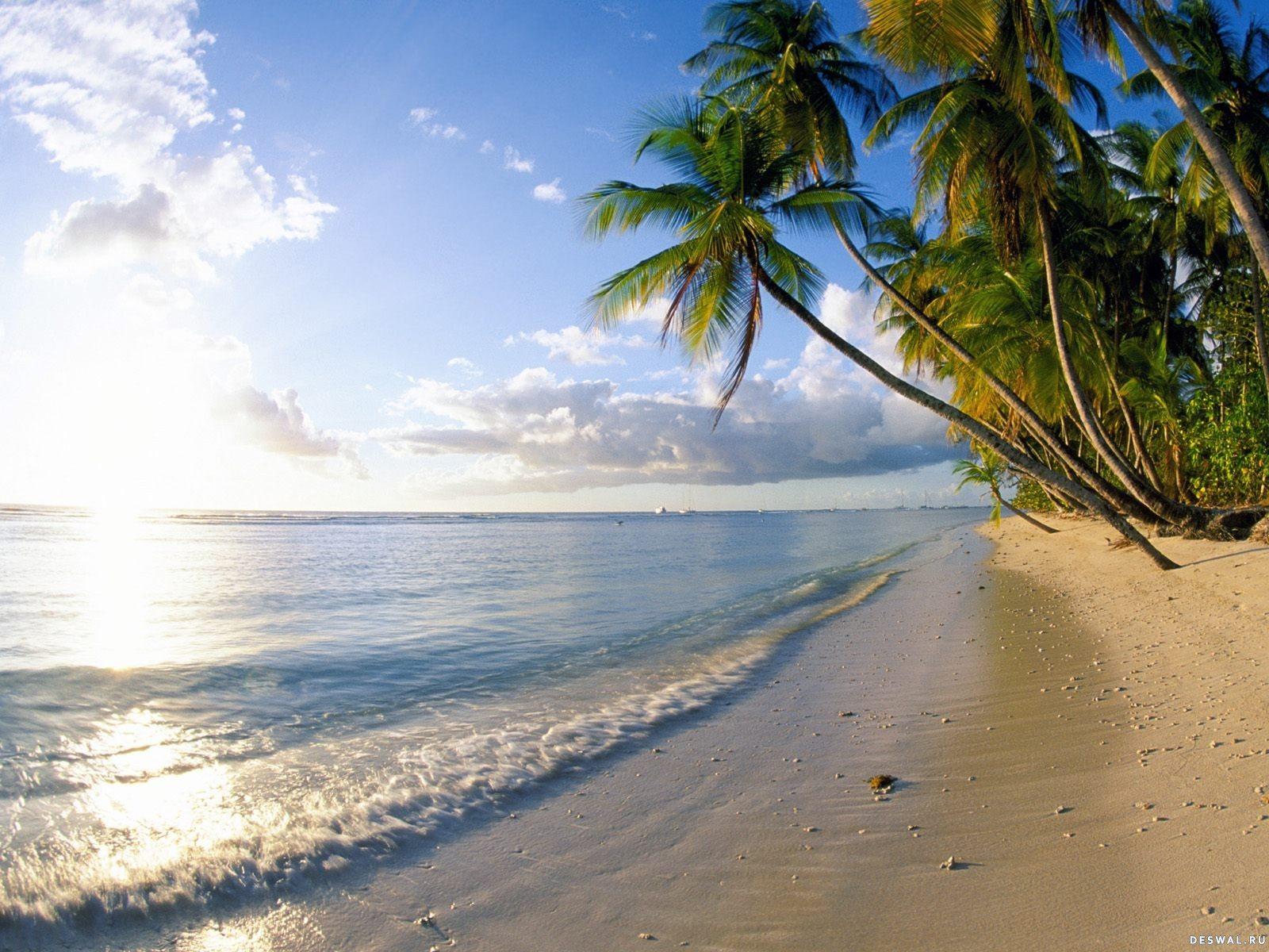 Фото 71.. Нажмите на картинку с обоями природы - пляж, чтобы просмотреть ее в реальном размере