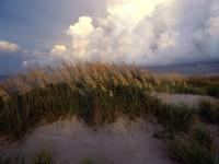 Фото 8.. Обои с природой для рабочего стола: обои с пляжем