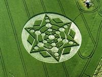 Фото 9.. Обои с природой для рабочего стола: обои с кругами на полях