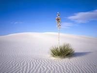 Фото 1., Обои с природой для рабочего стола: обои с природой -  пески и пустыни