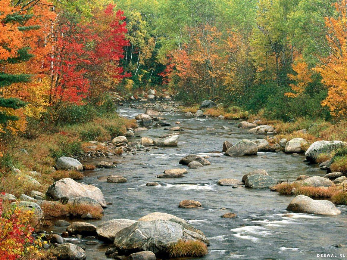 Фото 12.. Нажмите на картинку с обоями природы - осень, чтобы просмотреть ее в реальном размере