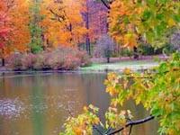 Фото 79.. Обои с природой для рабочего стола: обои с природой осенью