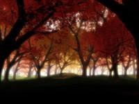 Фото 125.. Обои с природой для рабочего стола: обои с природой осенью