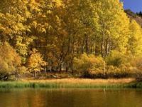 Фото 147.. Обои с природой для рабочего стола: обои с природой осенью