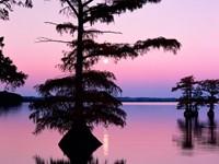 Фото 4.. Обои с природой для рабочего стола: озеро