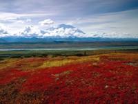Фото 4.. Обои с природой для рабочего стола: национальный  парк