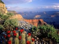 Фото 8.. Обои с природой для рабочего стола: национальный  парк