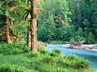 Фото 2.. Обои с природой для рабочего стола: пороги и реки