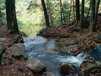 Фото 4.. Обои с природой для рабочего стола: пороги и реки