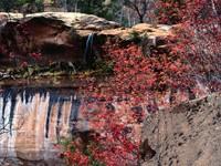 Фото 6.. Обои с природой для рабочего стола: пороги и реки