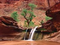 Фото 9.. Обои с природой для рабочего стола: пороги и реки