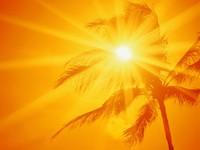 Фото 2.. Обои с природой для рабочего стола: солнце и небо