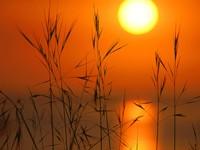 Фото 10.. Обои с природой для рабочего стола: солнце и небо