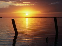 Фото 1., Обои с природой для рабочего стола: обои с природой - восход солнца