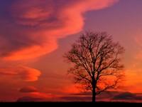 Фото 3.. Обои с природой для рабочего стола: закат солнца