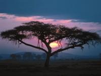 Фото 5., Обои с природой для рабочего стола: обои с природой -  закат солнца